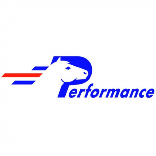 Logo Performance