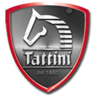Logo Tattini